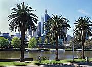 Banks of the Yarra River