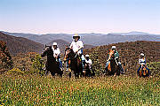 High Country Horse Ride