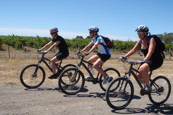 McLaren Vale bike and wine tour